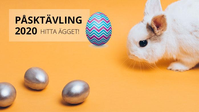 Årets äggjakt har dragit igång!